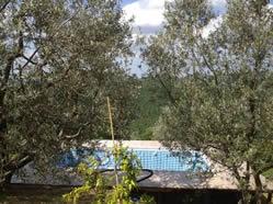 La Casina nel Bosco pool