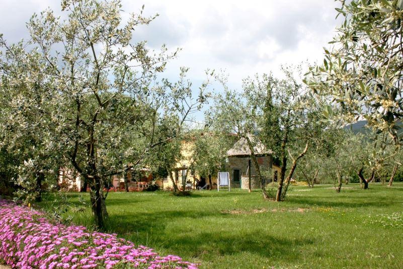 Organic farms - Agriturismo La Crosticcia, Tuscany, Italy